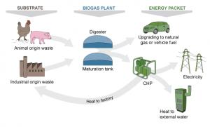 Producción y aprovechamiento del biogás