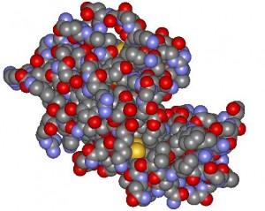 Lisozima: modelo de bolas.